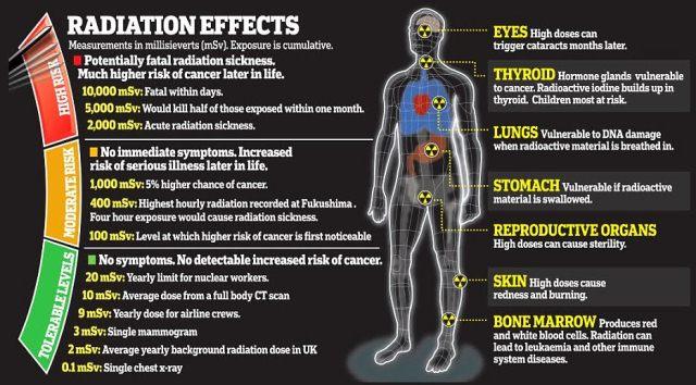 efek radiasi terhadap kesehatan